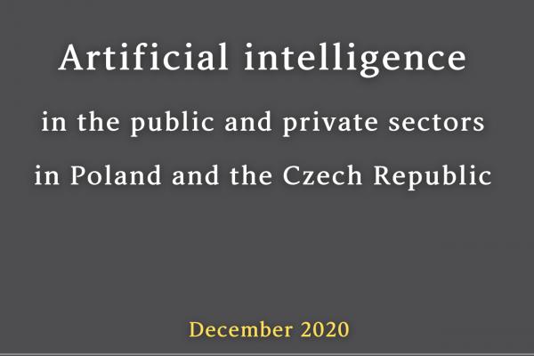 Wykorzystanie sztucznej inteligencji w sektorze publicznym i prywatnym w Polsce i Czechach – analiza porównawcza